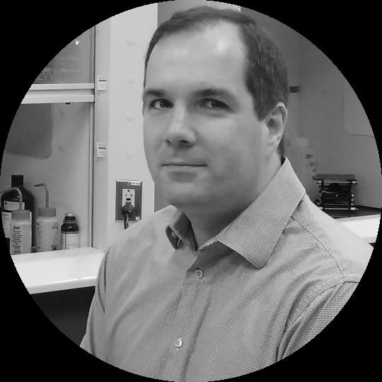 Voislav Blagojevic, Ph.D. : Senior Development Scientist